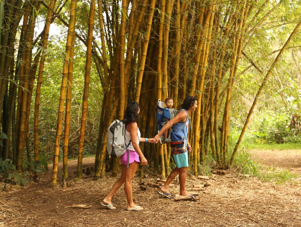 family in bamboo forest on international adventure